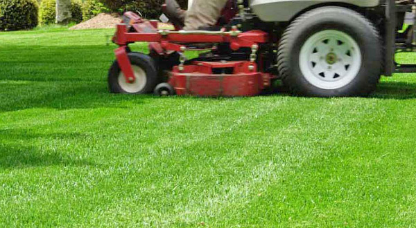 Pennsylvania Commercial Lawn Care